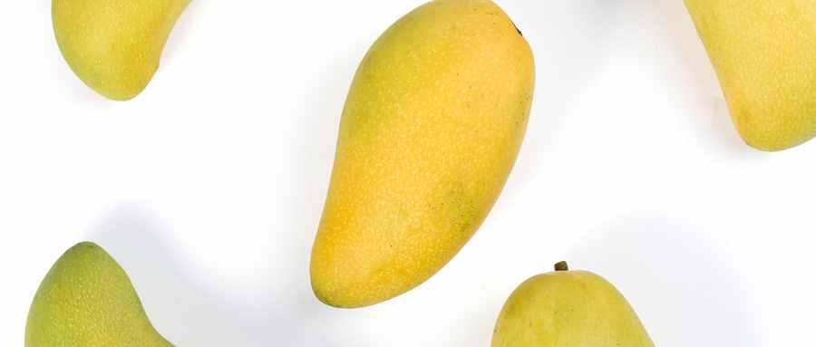 芒果是热性还是凉性水果