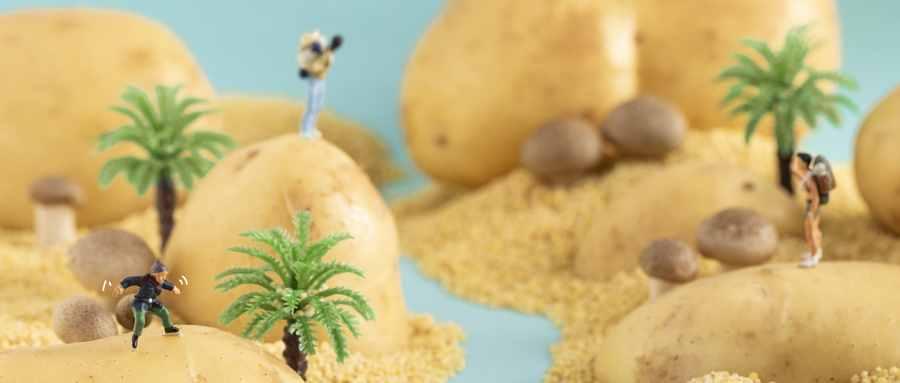 吃土豆会胖吗