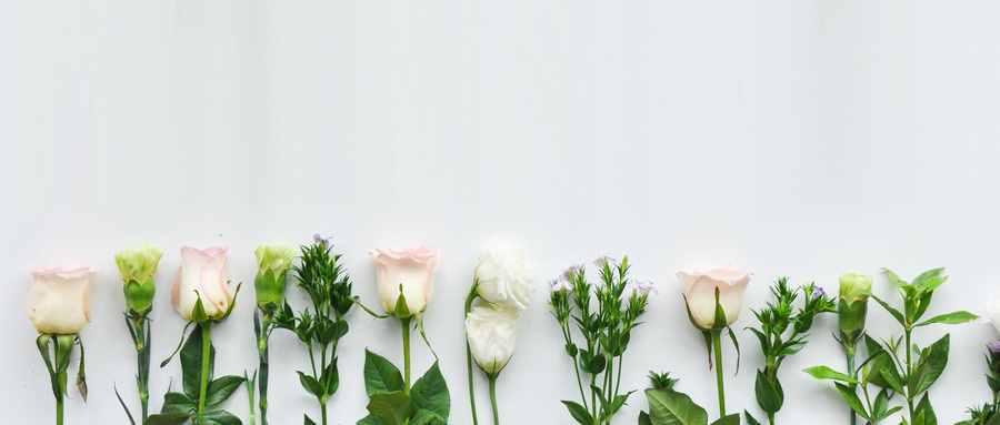 室内养花禁忌