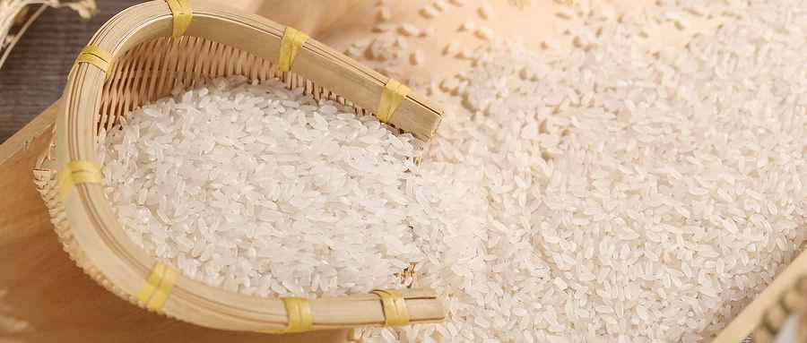 米生虫子处理小妙招