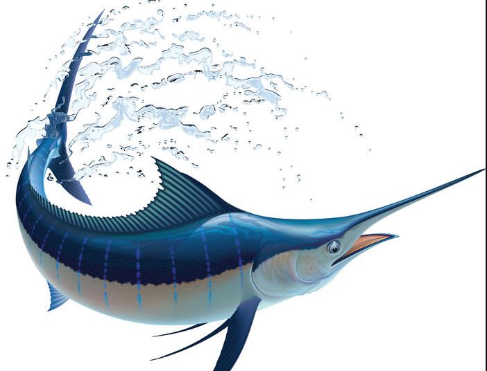 速度最快的海洋生物是什么