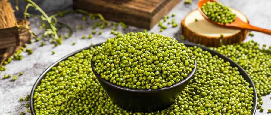 怎样防止绿豆生虫